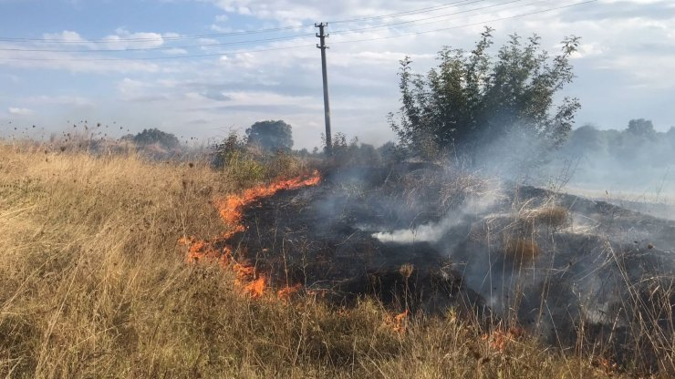 Tarlada çıkan yangın, evlere ulaşmadan söndürüldü