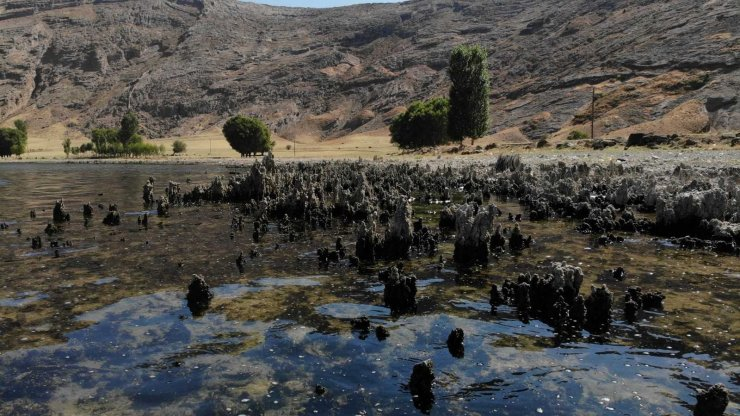 Van Gölü'nün suyu çekildi binlerce yıllık mikrobiyalitler gün yüzüne çıktı