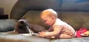 Bebek ve Kedinin Arkadaşlığı