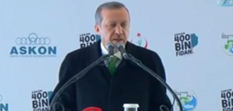 Basbakan fidan dikti, Gezi'cilere çattı