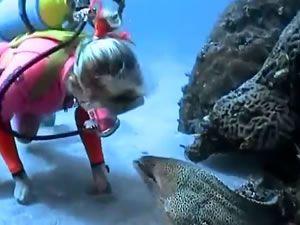 Dalgıcın balıkla ilginç dostluğu
